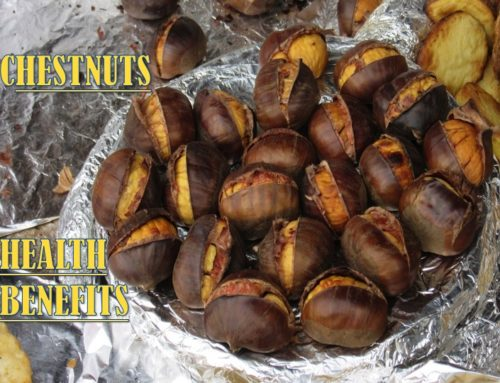 CHESTNUTS – HEALTH BENEFITS